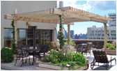 Green Roof Installation