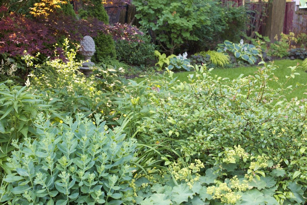 27 glengrove garden (2)