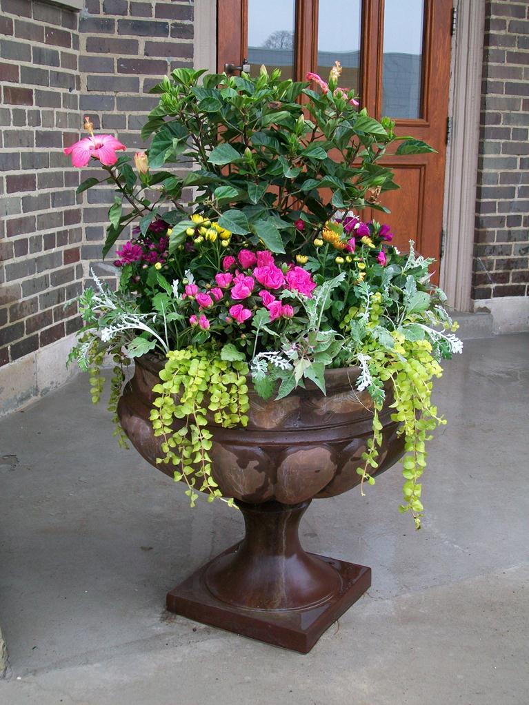 urn spring 2012