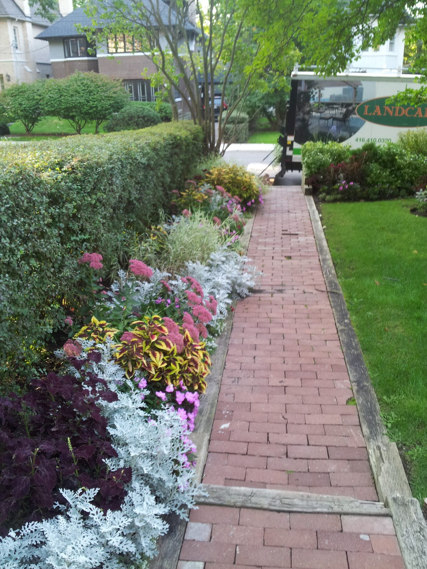 residential summer planting