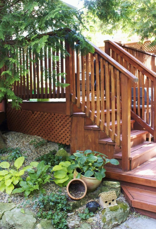 9 lamport back steps