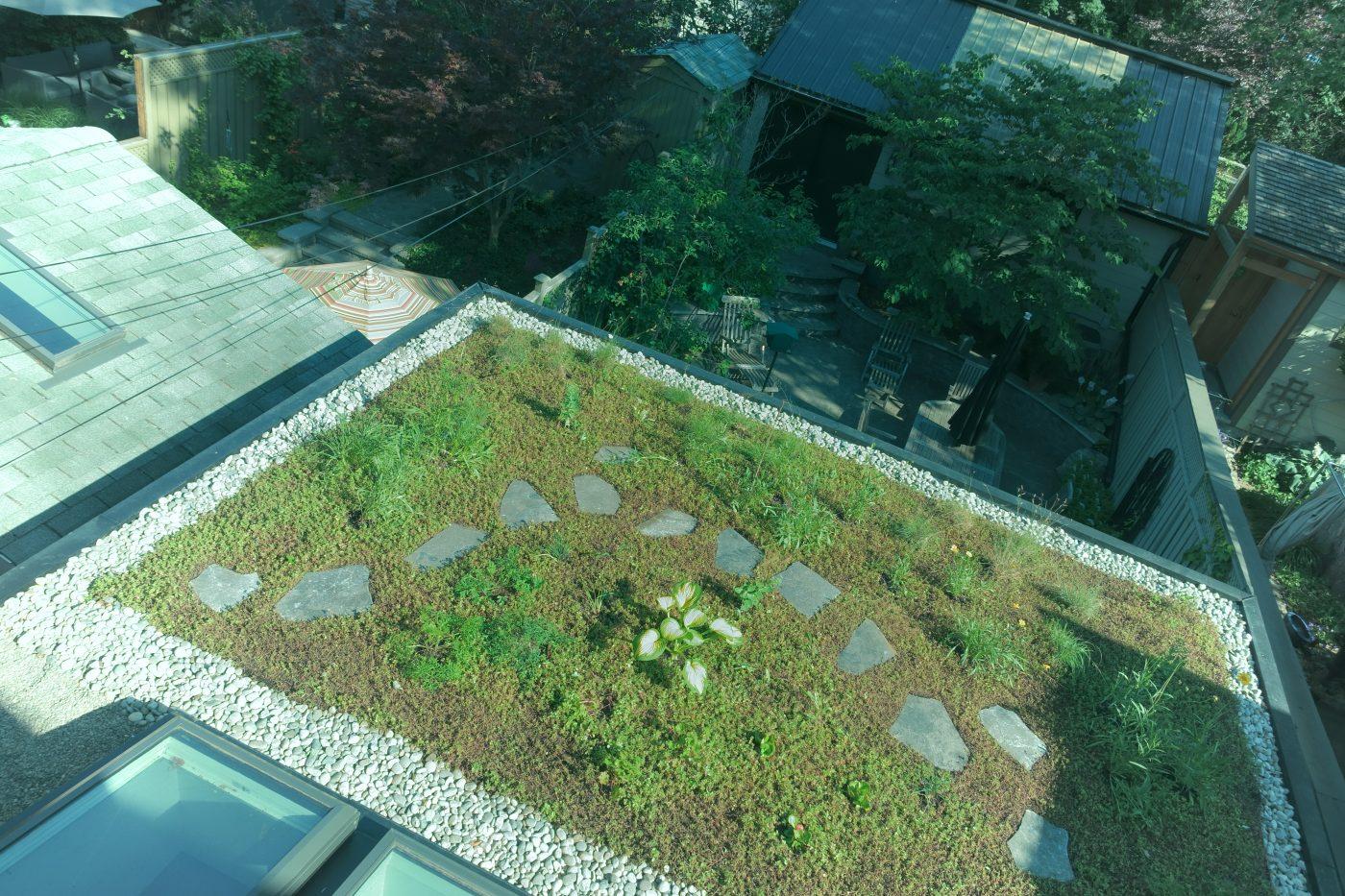 Green roof 2 14 Albermarle