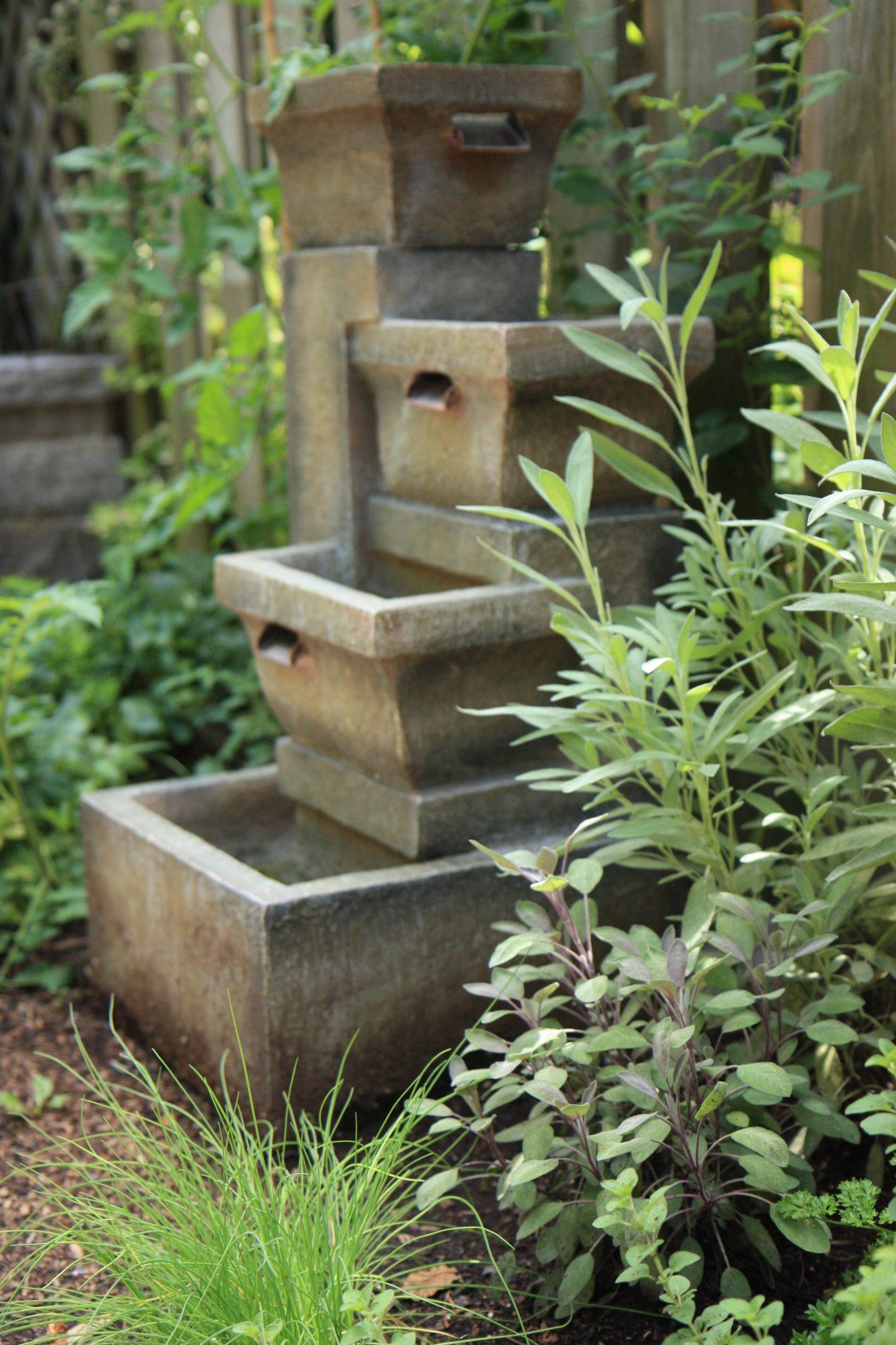 herb garden at 527 Brunswick
