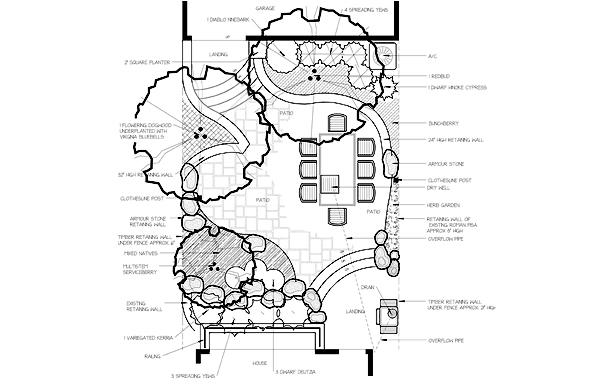 oasis back yard design