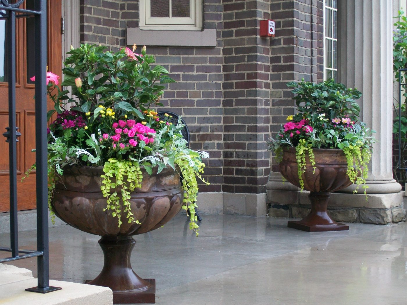 planting containers - spring urn picture